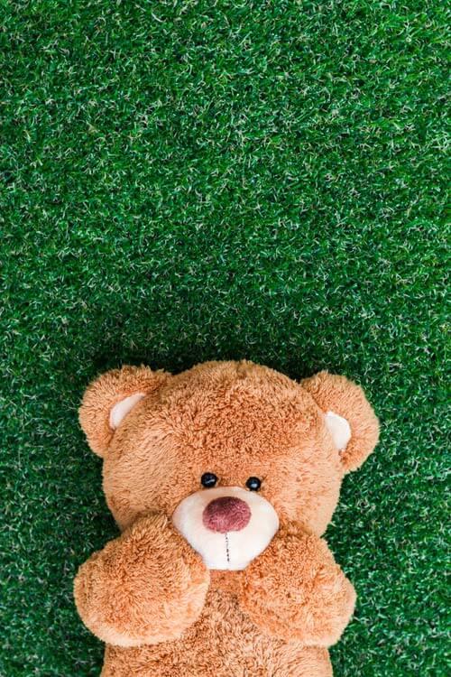 經典不敗的毛茸茸玩伴:泰迪熊(上) Teddy Bears